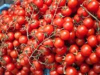 Sfaturi a la dr. Menci. Top 5 salate de vară răcoritoare şi sănătoase!