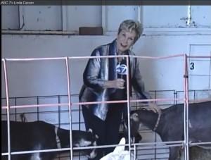 Jurnalista atacata de capra