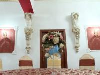 Paloma Satu Mare