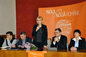 Elena Udrea, PDL Satu Mare, motiune