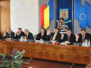 februarie 2013 sedinta consiliu judetean 0(11)