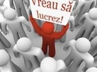locuri de munca Satu Mare, AJOFM Satu Mare