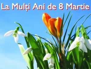 felicitare 8 martie priamrie