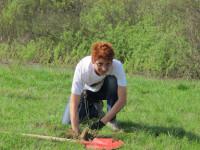 plantare puieti, Societate Carpatina Ardeleana Satu Mare
