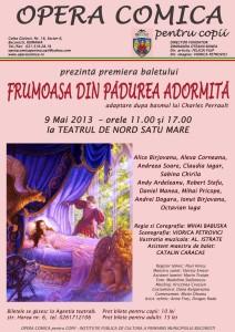 Opera comica, Frumoasa din padurea adormita, Teatrul de Nord Satu Mare