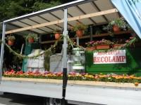 parada florilor 2013 (50)