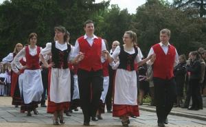 Zilele Culturale Germane Satmarene, Satu Mare 2013