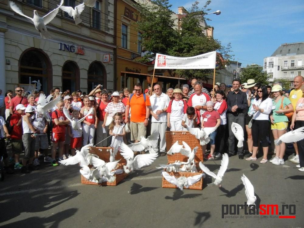 maraton Caritas 2013 (33)