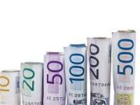 Firme sătmărene cu profituri de milioane de euro