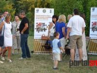 Donat Viile Satu Mare (67)