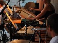 concert filarmonica aer liber satu mare (50)