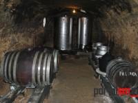 festivalul vinului beltiug (31)