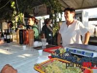 festivalul vinului beltiug (6)