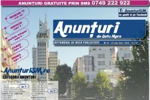 ANUNTURI - NR 6