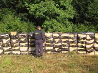 contrabanda tigari (1)