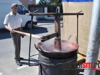 festival-culinar-negresti-oas-(28)
