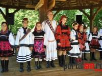 festival-culinar-negresti-oas-(56)