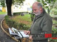 gradina-romei,-evaluare-stare-copaci,-expert-ungaria-(4)