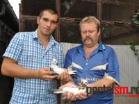 pestriti baltati de satu mare (4)