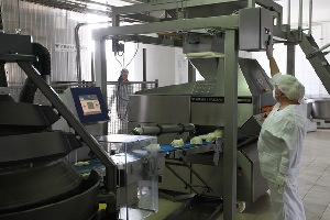 fabrica paine