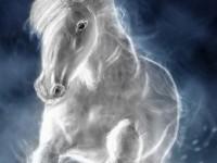 Astrologie chinezească: Ce aduce 2014 – Anul Calului de Lemn?