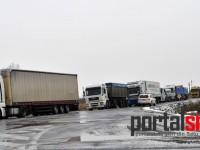 protestul-transportatorilor-satu-mare-(61)