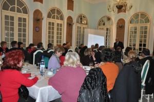 PDL Satu Mare, curs comunicare (1)