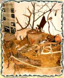 artefacte-de-os-si-corn-BpP