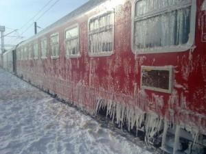 tren viscol