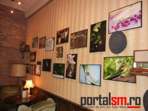 Expozitie Foto Red Hat Cafe (20)