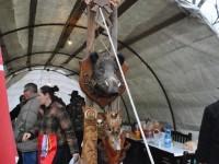 concurs de taiat porci (52)