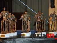 gala-laureatilor-satmareni--(11)