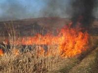 Incendiu de vegetație uscată pe trei hectare, la Huta Certeze