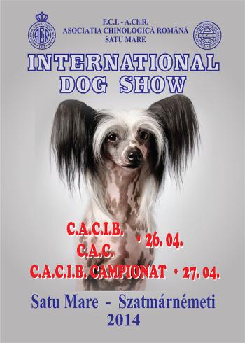 International Dog Show 2014