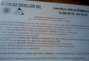 colias excellium