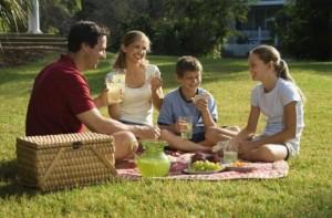 legea picnicului