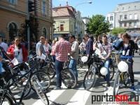 pedalam pentru bicicleta (6)