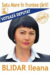 Ileana Blidar
