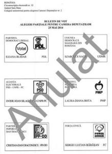 buletin de vot colegiul 2