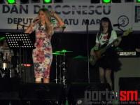 concert PPDD, Dan Diaconescu (150)