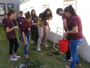 voluntari caritas