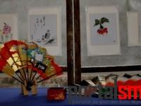 Zilele Japoneze la Satu Mare (3)