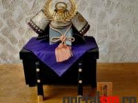 Zilele Japoneze la Satu Mare (6)