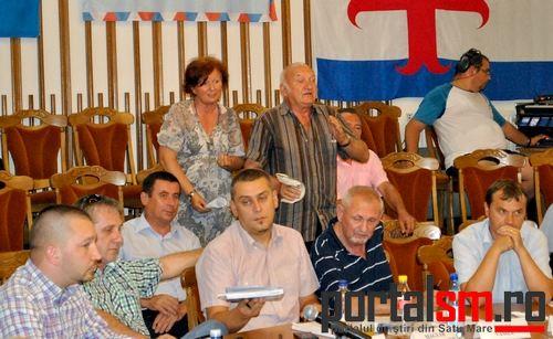 consiliul local (32)