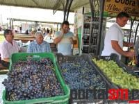 Festivalul Vinului Beltiug (108)
