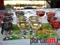 Festivalul Vinului Beltiug (111)
