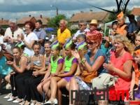 Festivalul Vinului Beltiug (90)