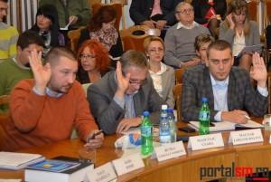 Consiliul Local (34)