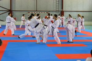 karateka CSM Satu Mare
