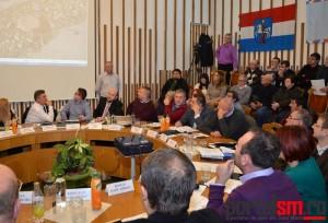 Consiliul Local (52)